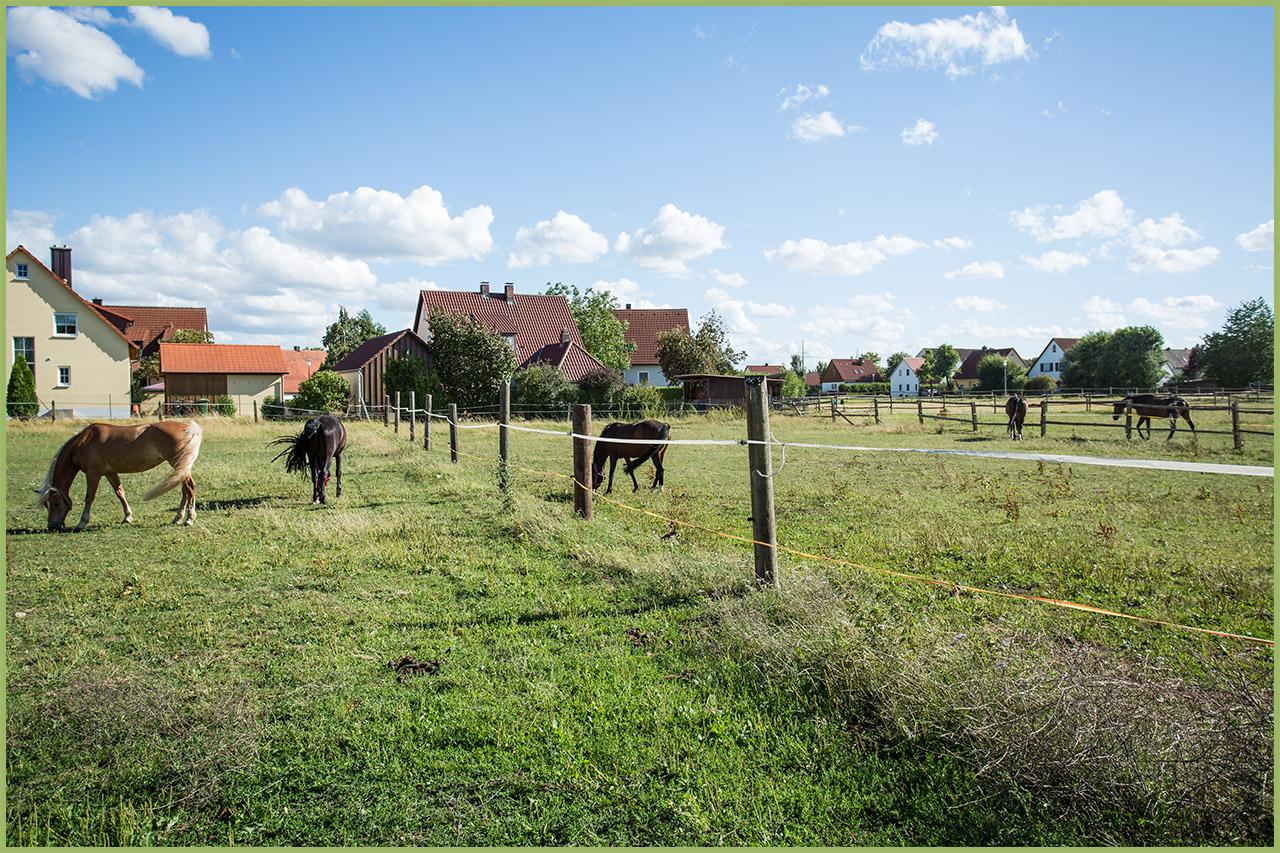 Außenanlage für Pferde rund um dem Reiterhof